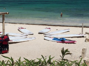 SUP boards!