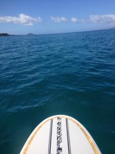 Nice paddling!