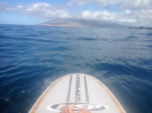 Perfect paddling